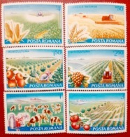 Tractor Trucks Vegetables Agriculture Set 6v Mnh Romania 1982 - Stamps