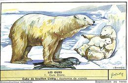 6 Chromos - Liebig - Les Ours - S 1620 - Liebig