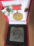 URSS - COMAT, 20 Ans 1960 => 1980 - Plaque En Bronze Argenté + Médaille + Broches Dont USSR Dans Coffret - Professionals / Firms