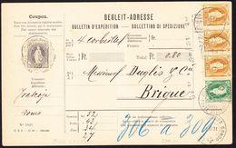 1901 Paket-Begleitadresse Von Domodossola Nach Brig. Schweizerischer Agenturstempel Domodossola Und Zollstempel Gondo - Covers & Documents