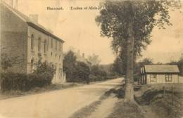 Belgique - Oupeye - Haccourt - Ecoles Et Abris - Oupeye