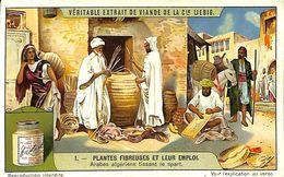 6 Chromos -Liebig - Plantes Fibreuses Et Leur Emploi - S 1147 - Liebig
