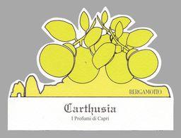 PUBLICITÉ PARFUM - CARTE PARFUMÉE / PERFUME ADVERTISING - FRAGRANCED CARD : CARTHUSIA - I PROFUMI Di CAPRI (ae825) - Perfume Cards