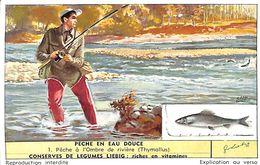 6 Chromos - Liebig - Pêche En Eau Douce - S 1623 - Liebig