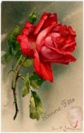 C. KLEIN - Roses - Klein, Catharina