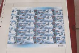 EUROPA ANNEE 2004  Foroyar     Cat Yt N° N° 493 NEUF** Feuille Entière - Europa-CEPT