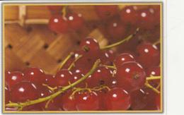 87919- GOOSEBERRIES, FRUITS, POCKET CALENDAR, 2012, ROMANIA - Small : 2001-...