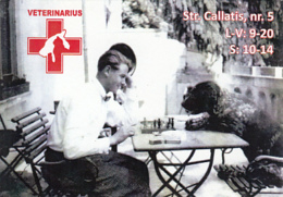 87925-DOG, CHESS, VETERINARY CLINIC ADVERTISING, POCKET CALENDAR, 2014, ROMANIA - Calendars