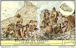 6 Chromos - Liebig - Histoire Du Cheval - S 1507 - Liebig