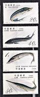 CHINE 1994   Faune   Poissons  Esturgeons   (4-4) - 1949 - ... People's Republic