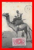 CPA SOUDAN (Afrique Occidentale)   Méhariste Soudanais...L059 - Soedan