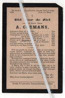 EERW. HEER A.COEMANS ° GENT 19829 + 1897/ ONDERPASTOOR ST.NIKOLAAS-WAES/AALMOEZENIER DER VLAMINGEN TE RIJSSEL - Images Religieuses