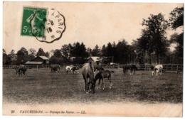 CPA 92 - VAUCRESSON (Hauts De Seine) - 28. Paysage Du Haras - LL (chevaux Et Vaches) - Vaucresson