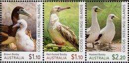 Cocos (Keeling) Islands - 2020 - Booby Birds - Mint Stamp Set - Cocos (Keeling) Islands