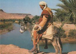 Carte Postale. Maroc Typique. Ânier En Habits Marocains Dans Une Oasis. - Costumes