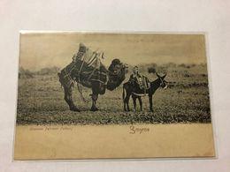 GREECE - OTTOMAN EMPIRE   -  SMYRNE - CHAMEAU PEHLAVON (LUTTEUR) - 1909 - Grèce