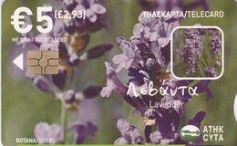 Cyprus, CYP-C-173, 0608CY, Herbs, Lavender, 2 Scans. - Cyprus