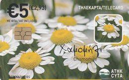 Cyprus, CYP-C-174, 0708CY, Herbs, Chamomile, 2 Scans. - Cyprus