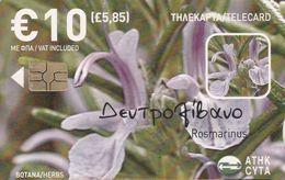Cyprus, CYP-C-175, 0808CY, Herbs, Rosemary, 2 Scans. - Cyprus