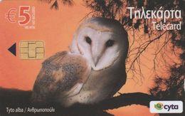Cyprus, CYP-C-183, 0509CY,   Birds, Tydo Alba (Owl) 2 Scans. - Cyprus