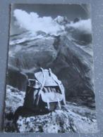 Hommage A Nos Compagnons Des Hautes Promenades Dans Les Nuages La Verte Et Le Dru ( Pli) Alpinisme - Mountaineering, Alpinism