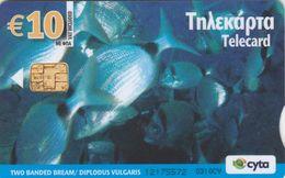 Cyprus, CYP-C-187, 0310CY, Underwater, Two Banded Bream - Diplodus Vulgaris, 2 Scans. - Cyprus