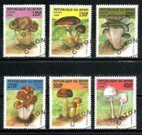 BENIN CHAMPIGNONS 1998 (5) N° Yvert 796 à 801 Oblitéré Used - Bénin – Dahomey (1960-...)
