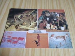 Afrique Du Sud - Bushmen - Vues Diverses. - South Africa