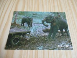 Sri Lanka - Elephants At Work. - Sri Lanka (Ceylon)