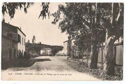 CORSE CPA  SAGONE - L' Entrée Du Village Par La Route De Vico - Francia