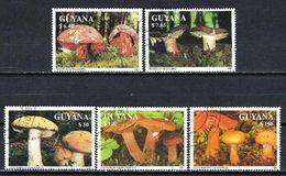 GUYANA CHAMPIGNONS 1991 (44) N° Yvert Non Répertorié Oblitéré Used - Guyane (1966-...)