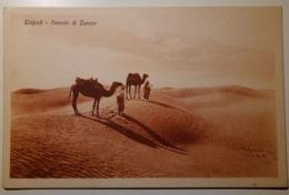 Libya - Libia Italiana (ex Colonie) - Tripoli - Deserto Di Zanzur - Non Viaggiata - Cammelli, Cammello, Camels - Libia