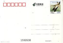 China 2016 Animal Bird Wild Goose Post Card - Unused Stamps