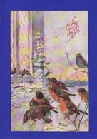 Oiseaux Rouge Gorge SOUHAITS SNCERES CPA OILETTE TUCK S 1910 ( Très Très Bon état ) +6708 - Oiseaux