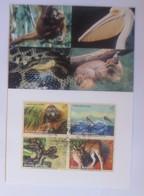 UNO Wien  Gefährdeten Arten   1999  Maximumkarte  Nr. 61  ♥ (56096) - Wien - Internationales Zentrum