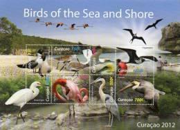2012 CURACAO - Birds - Sin Clasificación