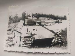 "WW II Foto ""Wehrmacht Panzer Tank Panther "" - 1939-45"