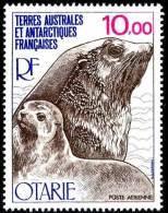 "TAAF Aerien YT 48 (PA) "" Otarie "" 1977 Neuf** - Airmail"