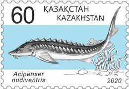 Kazakhstan 2020. Fish.New!!! - Kazakhstan