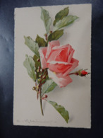 Illustrateur: KLEIN Catharina - N°20 - Circulé - 2 Scans. - Klein, Catharina