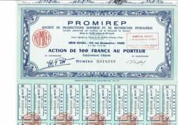75-PROMIREP. MINES ET PETROLE, Voir Texte. Action. Capital 55 MF - Acciones & Títulos