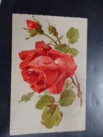 Illustrateur: KLEIN Catharina - N°26 - Circulé - 2 Scans. - Klein, Catharina