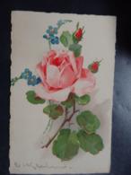 Illustrateur: KLEIN Catharina - N°27 - Circulé - 2 Scans. - Klein, Catharina
