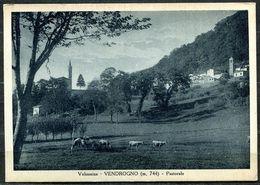 CV3271 VENDROGNO (Lecco LC) Valsassina, Pastorale,  FG, Viaggiata 1948 Per Gessate, Ottime Condizioni - Lecco