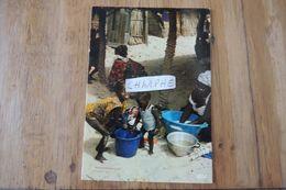 SENGAL - SCENE DE VIE - SCENE FROM LIFE - Sénégal