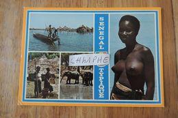SENEGAL - SENEGAL TYPIQUE - 4 VUES - Sénégal