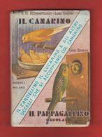 Uccelli Canarini Il Canarino Il Pappagallino Ondulato U. Hoepli 1952 Birds Oiseaux Vögel ASCHENBRENNER GHIDINI - Livres, BD, Revues