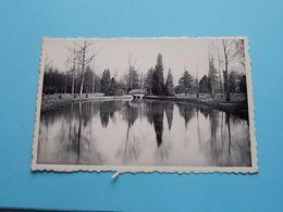 """"""" TER BEUKEN """" Arendonk ( Huis Carpentier ) Anno 19?? ( Zie / Voir Photo > Detail ) ! - Arendonk"""