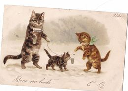 CHATS HUMANISES ,,,HELENA MAGUIRE ,,LA COQUINERIE DU CHAT QUI MENDIE EN  S'ANNONCANT AVEUGLE, VOR LE CLIN OEIL - Cats