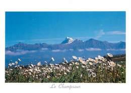 05 - Hautes Alpes - Depuis Le Col De Manse Vue Sur Le Vieux Chaillol 3162m - CPM - Voir Scans Recto-Verso - Other Municipalities